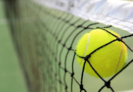 tennis-ball-net